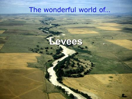 Everything you need to know about them Levees The wonderful world of…