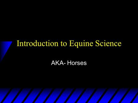 Introduction to Equine Science AKA- Horses. I. Breeds.