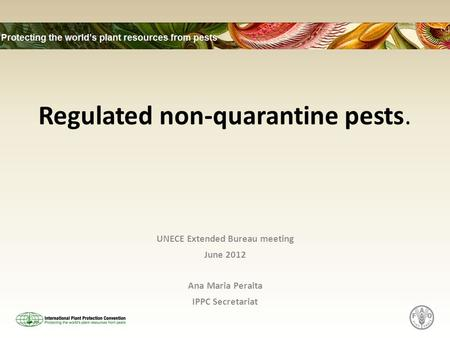 Regulated non-quarantine pests. UNECE Extended Bureau meeting June 2012 Ana Maria Peralta IPPC Secretariat.