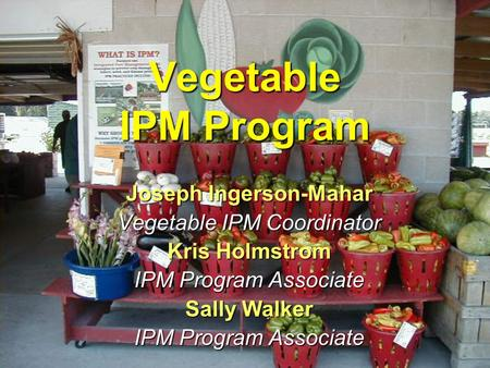 Vegetable IPM Program Joseph Ingerson-Mahar Vegetable IPM Coordinator Kris Holmstrom IPM Program Associate Sally Walker IPM Program Associate.