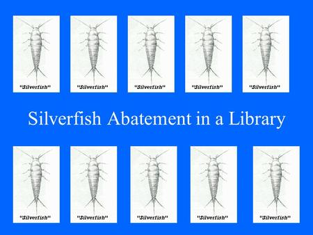 Silverfish Abatement in a Library. Silverfish & the Affected Library A History Sightings Search Conclusions Drawn.