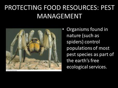 PROTECTING FOOD RESOURCES: PEST MANAGEMENT Organisms found in nature (such as spiders) control populations of most pest species as part of the earth's.