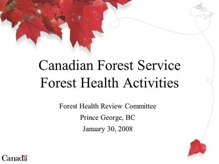 Forest Health Review Committee Prince George, BC January 30, 2008 Canadian Forest Service Forest Health Activities.