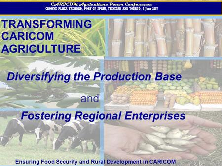 TRANSFORMINGCARICOMAGRICULTURE CARICOM Agriculture Donor Conference CROWNE PLAZA TRINIDAD, PORT OF SPAIN, TRINIDAD AND TOBAGO, 2 June 2007 CARICOM Agriculture.