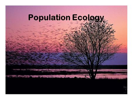 Population Ecology. Ecology - Study of interactions among organisms and their environment Conservation biology, environmentalism: preservation of natural.