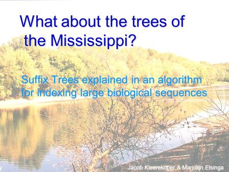 What about the trees of the Mississippi? Suffix Trees explained in an algorithm for indexing large biological sequences Jacob Kleerekoper & Marjolijn Elsinga.