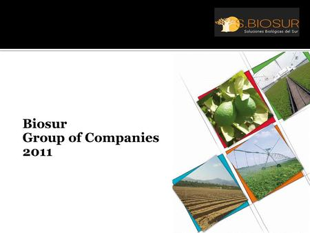 Biosur Group of Companies 2011.  Challenges  Solutions  History  Products  Strategy  Value added  Summary.