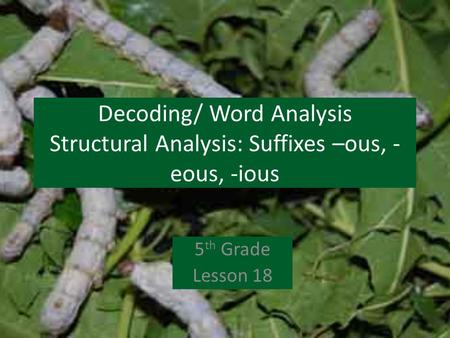Decoding/ Word Analysis Structural Analysis: Suffixes –ous, - eous, -ious 5 th Grade Lesson 18.
