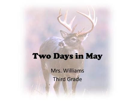 Mrs. Williams Third Grade