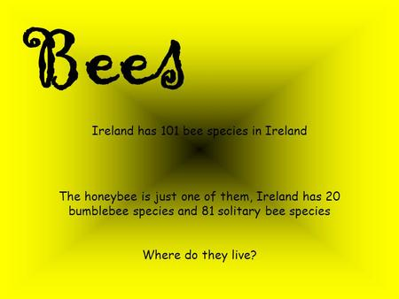 Bees Ireland has 101 bee species in Ireland The honeybee is just one of them, Ireland has 20 bumblebee species and 81 solitary bee species Where do they.