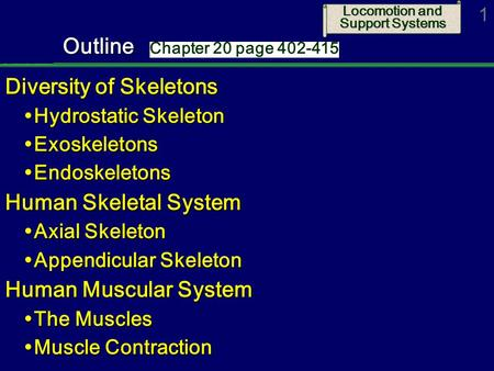 locomotion and transport - ppt video online download, Skeleton