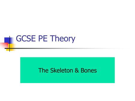 GCSE PE Theory The Skeleton & Bones.