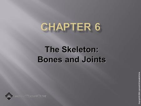 Copyright © 2004 Lippincott Williams & Wilkins The Skeleton: Bones and Joints.