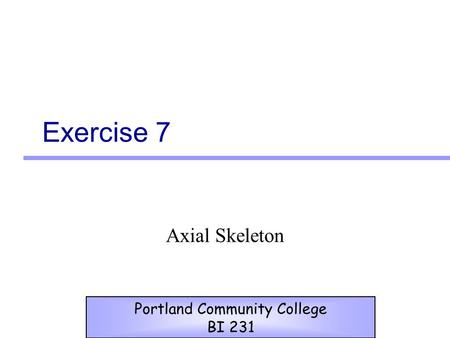 Exercise 7 Axial Skeleton Portland Community College BI 231.