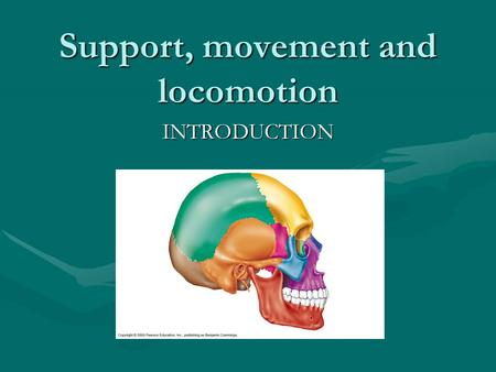 Support, movement and locomotion INTRODUCTION. Objectives: List and describe the major functions of the skeletal system.List and describe the major functions.