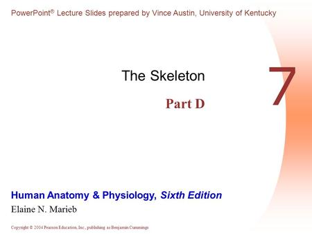 The Skeleton Part D 7.