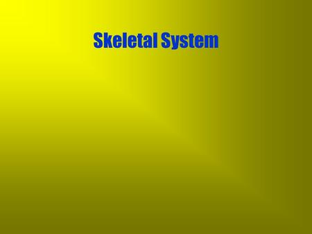 Skeletal System The Basics Skeletal System The Basics –provides support and shape to the body.