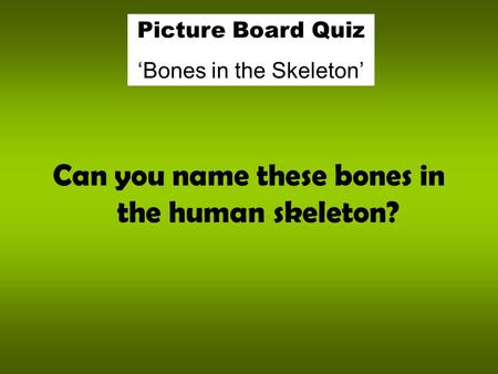 Can you name these bones in the human skeleton? Picture Board Quiz 'Bones in the Skeleton'