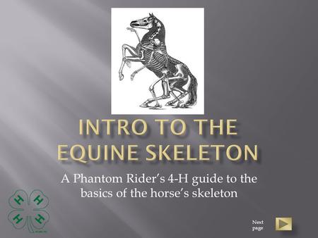 A Phantom Rider's 4-H guide to the basics of the horse's skeleton Next page.
