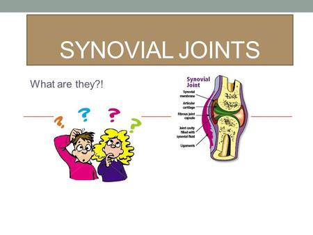 SYNOVIAL JOINTS What are they?!. Skeletal System.