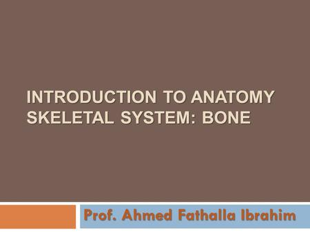 INTRODUCTION TO ANATOMY SKELETAL SYSTEM: BONE Prof. Ahmed Fathalla Ibrahim.