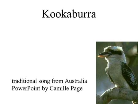 Kookaburra traditional song from Australia PowerPoint by Camille Page.