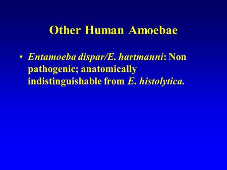 Other Human Amoebae Entamoeba dispar/E. hartmanni: Non pathogenic; anatomically indistinguishable from E. histolytica.
