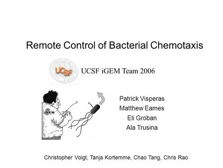 Remote Control of Bacterial Chemotaxis UCSF iGEM Team 2006 Patrick Visperas Matthew Eames Eli Groban Ala Trusina Christopher Voigt, Tanja Kortemme, Chao.
