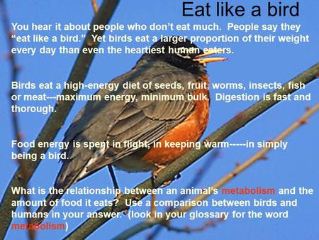 "Eat like a bird You hear it about people who don't eat much. People say they ""eat like a bird."" Yet birds eat a larger proportion of their weight every."