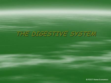 THE DIGESTIVE SYSTEM © PDST Home Economics.  Without food, water and oxygen, human beings could not survive.  The digestive system is a set of organs.