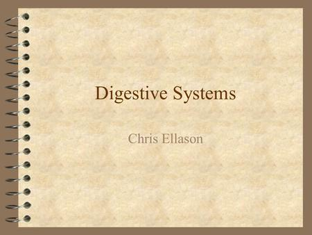 Digestive Systems Chris Ellason. Digestion and Absorption: 4 The process of digestion includes: –The prehension of food or feed –The mechanical chewing.