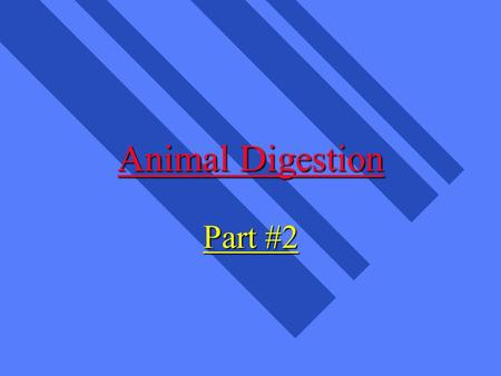 Animal Digestion Part #2. What are Nutrients? n parts of food which provide for growth, maintenance, body functions n Carbohydrates (CHO) n Fats n Proteins.