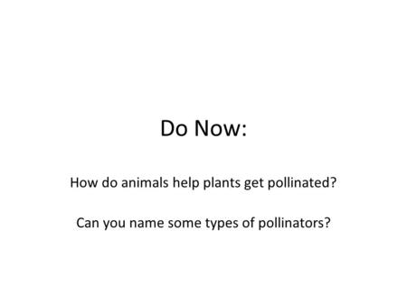 Do Now: How do animals help plants get pollinated? Can you name some types of pollinators?