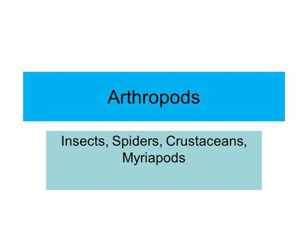 Arthropods Insects, Spiders, Crustaceans, Myriapods.