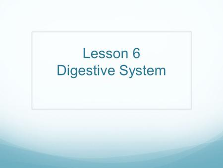 Lesson 6 Digestive System AIM : How does the digestive system work to maintain a stable and healthy body? Do Now: What are you doing?