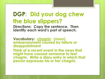 DGP: Did your dog chew the blue slippers? Directions: Copy the sentence. Then Identify each word's part of speech. Vocabulary: chagrin: (noun) embarrassment.