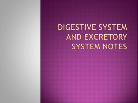  The Digestive System  What does the Digestive System do? Your Digestive system digests food to use as energy for your body  There are seven main organs.