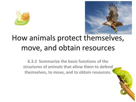How animals protect themselves, move, and obtain resources 6.3.2 Summarize the basic functions of the structures of animals that allow them to defend themselves,