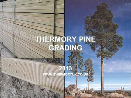 THERMORY PINE GRADING 2013 WWW.THERMORYUK.CO.UK.
