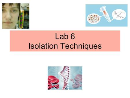 Lab 6 Isolation Techniques