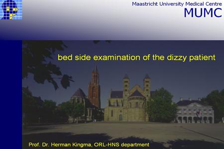 Bed side examination of the dizzy patient Herman Kingma, ORL-HNS department.