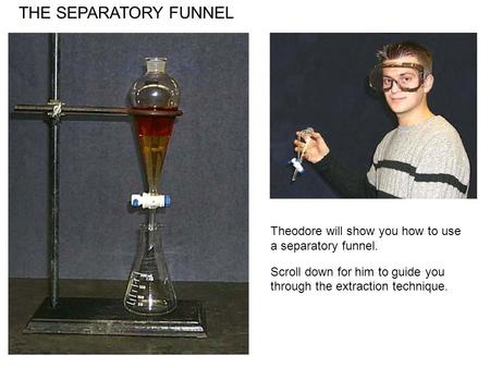 THE SEPARATORY FUNNEL Theodore will show you how to use a separatory funnel. Scroll down for him to guide you through the extraction technique.