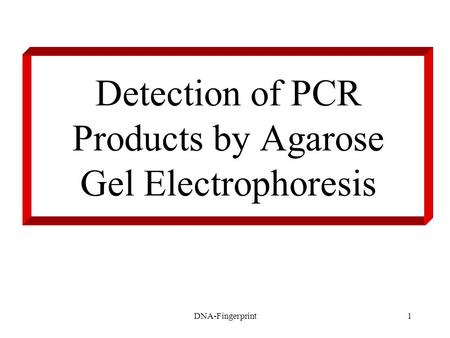 DNA-Fingerprint1 Detection of PCR Products by Agarose Gel Electrophoresis.