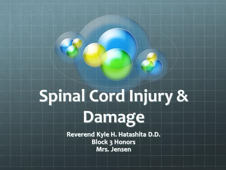 Spinal Cord Injury & Damage Reverend Kyle H. Hatashita D.D. Block 3 Honors Mrs. Jensen.