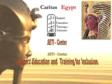Caritas Egypt. (Cariats Egypt - SETI Center ) Prepared by Mr. Essam Franciss Community Based Rehabilitation Consultant SETI Center / Caritas Egypt.