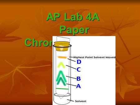 AP Lab 4A Paper Chromatography. - technique that separates molecules from each other.
