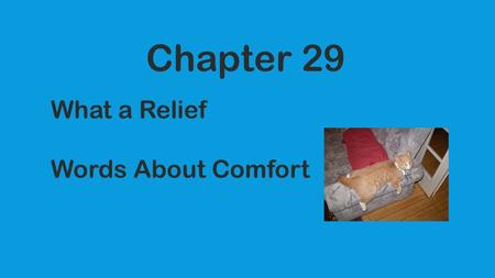 Chapter 29 What a Relief Words About Comfort. 1. palliative -noun/adj. Soothing the symptoms of a disorder but not curing it. Crying is considered palliative.