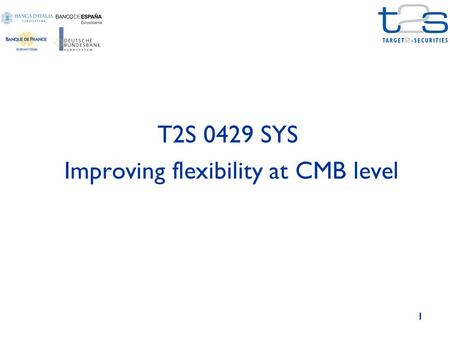 1 T2S 0429 SYS Improving flexibility at CMB level.