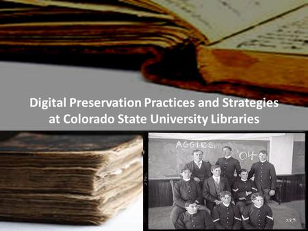 Digital Preservation Practices and Strategies at Colorado State University Libraries.