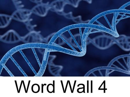 Word Wall 4. numerator- number at the top of a fraction; it is divided by the bottom number numerous– too many to count.